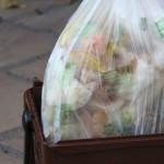 porta a porta bossa organica